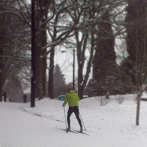 Cross country skier, Laurelhurst Park.