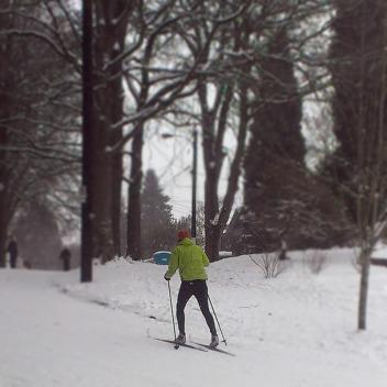 Cross country skier, Laurelhurst Park.