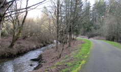 Discovery Trail by Burnt Bridge Creek.