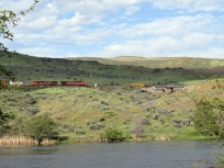 BNSF freight in the Deschutes gorge.