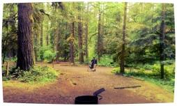 Oxbow campsites.