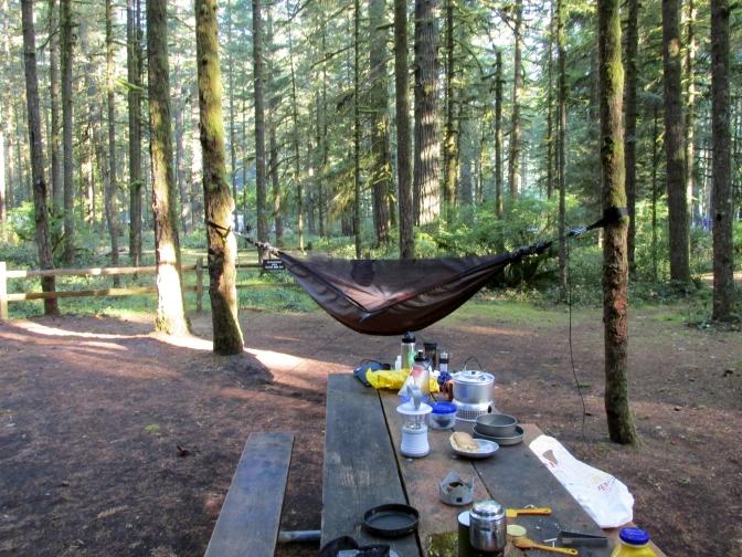 Zack's hammock.