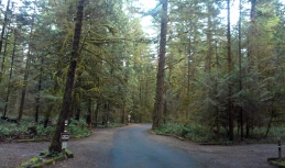 Oxbow campground.
