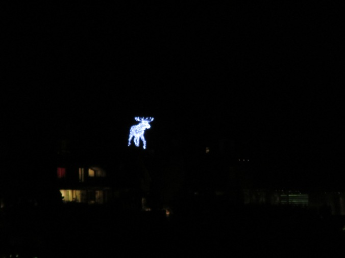 That glowing moose!