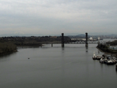 Looking up the Willamette