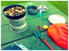Dinner in the park, 5 June