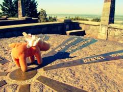 moosemoose looks toward Mt St Helens