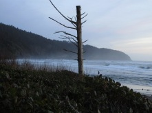 a-misty-post-sunset-view-of-cape-lookout_26373645326_o