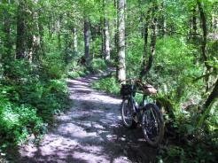 north-ridge-trail_25931674383_o