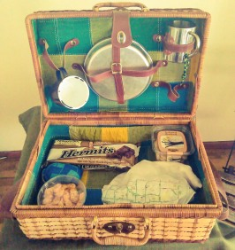 ready-for-the-picnic_26443542681_o