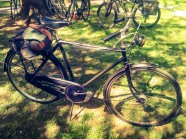 rod-brakes-full-chaincase-and-dynohub_26443546041_o