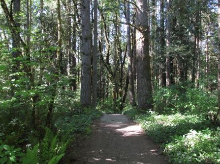south-ridge-loop-at-whipple-creek_25931813384_o