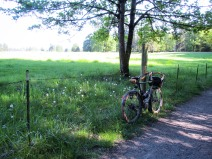to-capture-the-classic-pondero-picture-all-you-need-is-a-bike-a-barbed-wire-fence-and-grass_26508543756_o