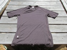 Icebreaker 200 series merino t-shirt, brown, Large