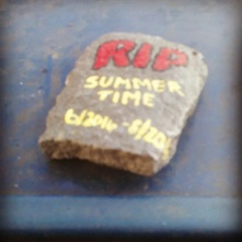 a-rock-on-top-of-a-blue-mailbox-has-informed-me-that-summer-is-over_30155694772_o