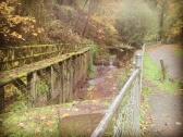 entering-forest-park-hello-batch-creek-forestpark-forestparkpdx-forestparkportland-balchcreek_30265407640_o