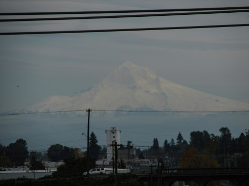 i-love-how-mt-hood-looks-after-a-fresh-coat-of-snow-and-also-in-that-high-clouds-kind-of-light-mthood_29807871813_o