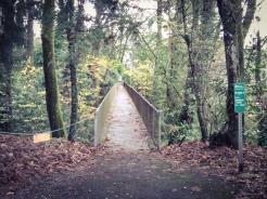 the-secret-footbridge-behind-ainsworth-school_31203500402_o