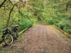 the-crown-zellerbach-trail-is-a-rail-trail-albeit-a-logging-railroad-rail-trail-it-can-be-rough-but-it-has-its-sublime-moments-crownzellerbachtrail-coastminitourmay2017_34403526120_o