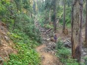 A section of the Pacific Crest Trail